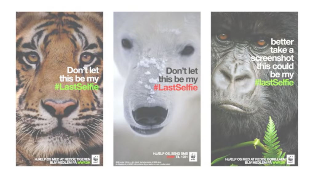 short-animal-ads-wwf-snapchat